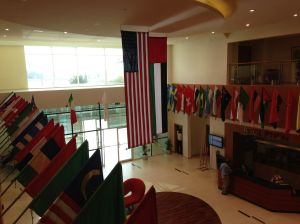 Each flag represents a student who attends the school.