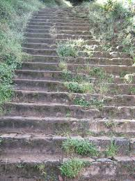 AP Steps Grassy